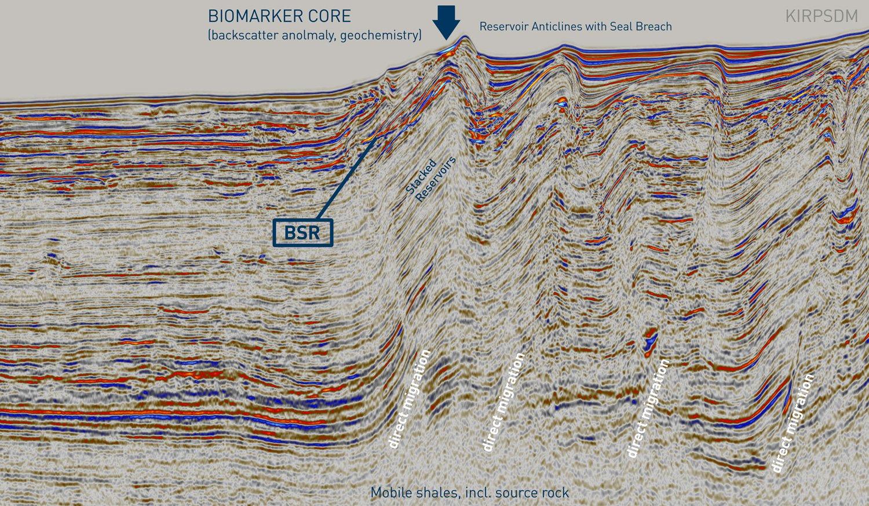 NIgeria-BSR-Core-Biomarker-ZoomIn_MARKETING